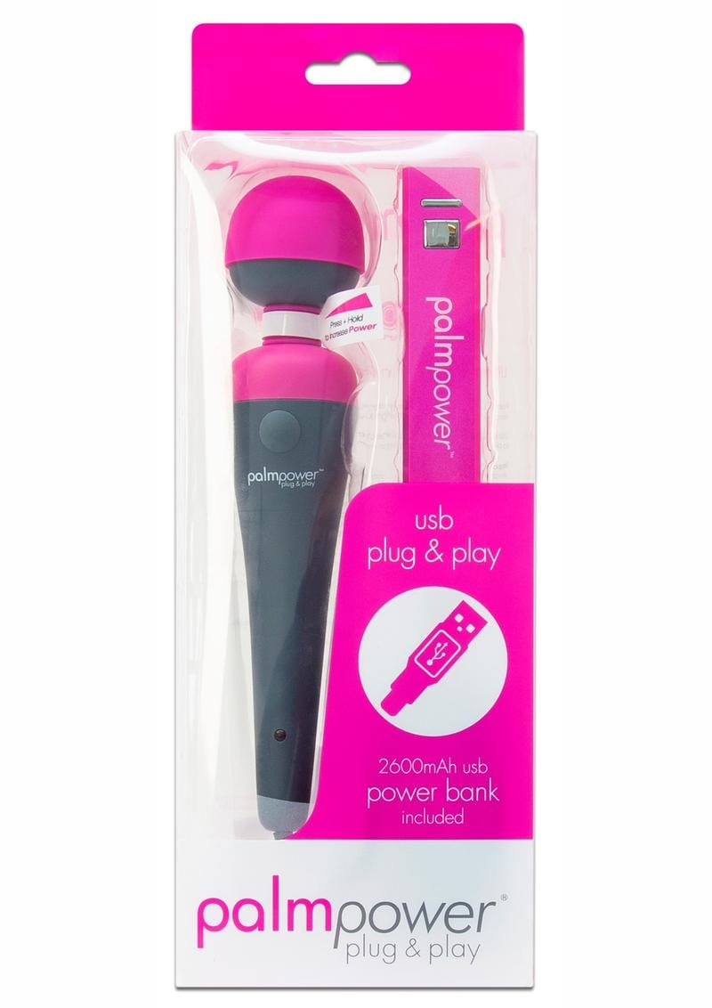Palmpower Plug and Play Massager