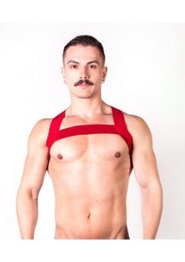 Prowler Red Sports Harness Red Os